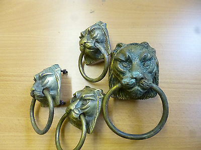 Cast Brass Reclaimed Lioness/Lynx Head Drawer Pulls - 1 large and 3 small