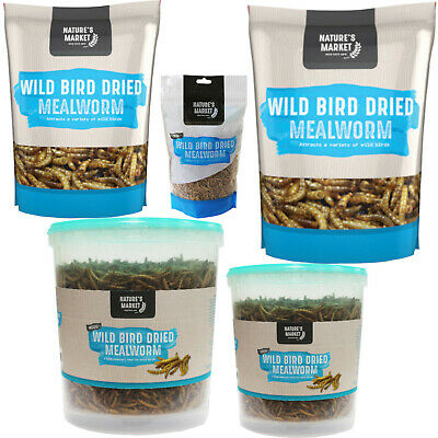 Wild Bird Feed Mealworm - Choice of Pack Size - Meal Worm from Kingfisher