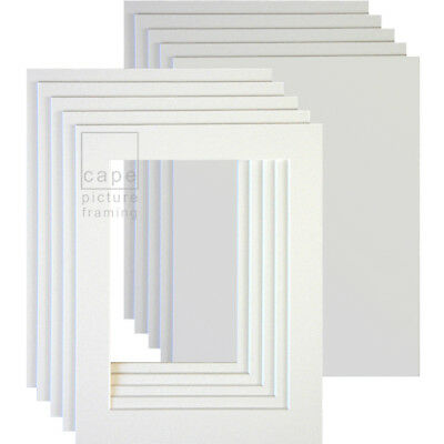 Picture Photo Mounts with Backs, Pack of 10, Bevel Cut, White Core