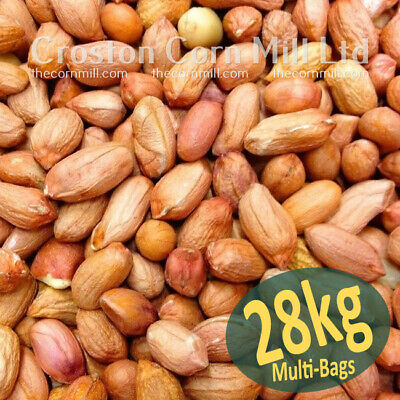 28kg *Premium Grade* Peanuts for Wild Birds -  Groundnut Kernels Bird Food Nuts