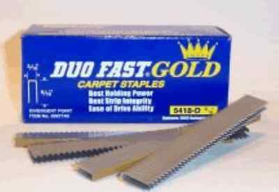 Duo-Fast 5418D 9/16-Inch by 20 Gauge 3/16 Crown Gold Staple 5,000 per Box