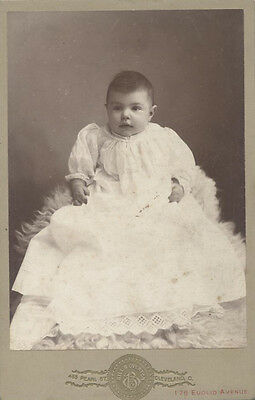 Cabinet Card Portrait Of Adorable Baby On Fur Rug - Cleveland, Ohio