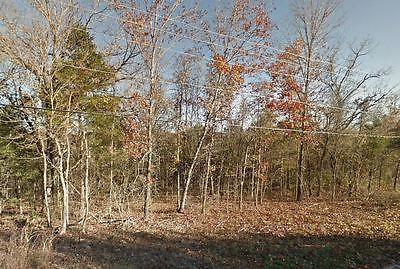 2 Beautiful lots for sale in Taney County, MO 009202