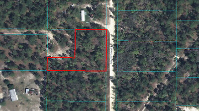 Big Untouched Lot in Marion County - #014113