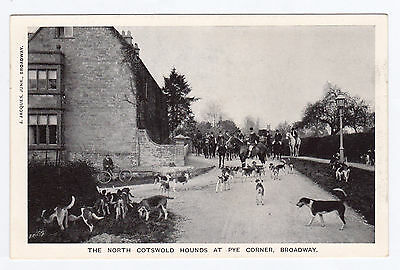 P2565 Original old postcard of N Cotswold Hounds at Broadway, Worcestershire