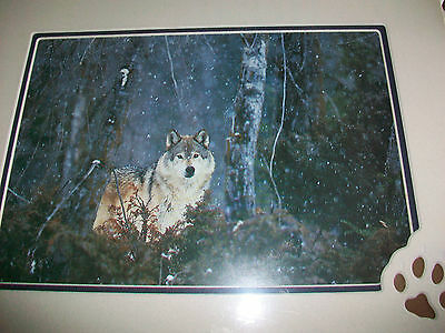 Wolf In The Snowy Forest Matted Lithograph