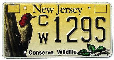New Jersey CONSERVE WILDLIFE WOODPECKER Specialty License Plate #CW129S