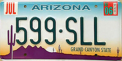 Arizona DESERT CACTUS Embossed License Plate - GRAND CANYON STATE