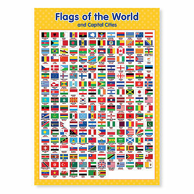 A3 Laminated Flags of the World Poster Wall Chart