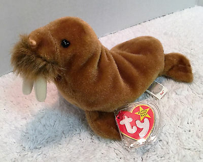 """Ty Beanie Babies """"Paul the Walrus"""" 1999 Plush w tags & tag protector EXC"""