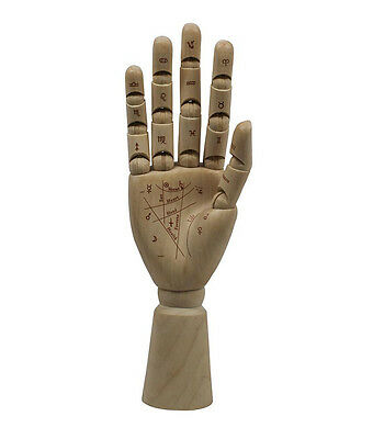 Palmistry Modell Hand Holz Handlesen Authentic Models