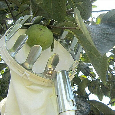 HOT Convenient Horticultural Fruit Picker Gardening Apple Pear Picking Tools