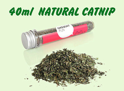 Natural Organic Dried Canadian Catnip Cat Kitten Toy Refill Treat + Free Mouse