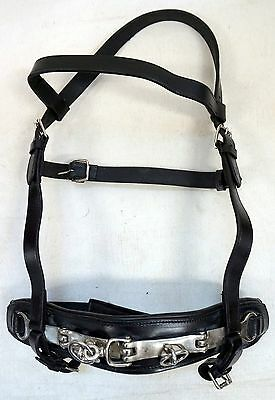 Black Leather Full Horse Size Lunging Training Cavesson with Brass Fittings