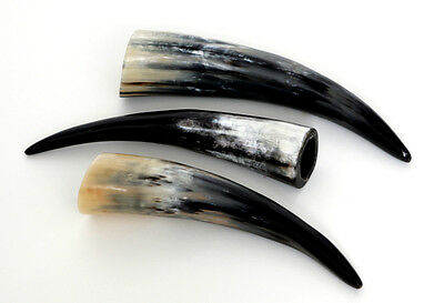 Classy Cow horns 20 - 60 cm Cattle Bull polished Drinking New