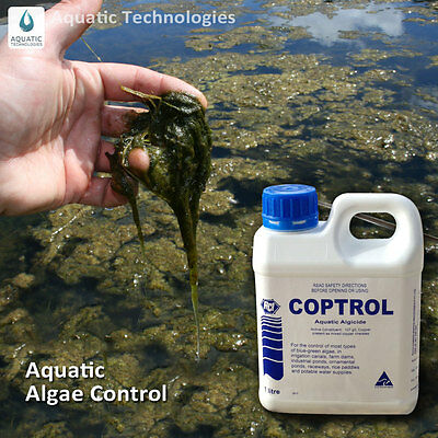 Coptrol Commercial Grade Algicide 1Litre - For Algae Control in dams & ponds