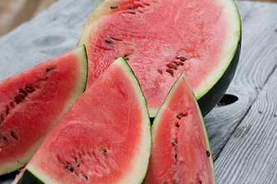 35 Sugar Baby Watermelon Seeds 2019 ( Non-Gmo Free Shipping! )