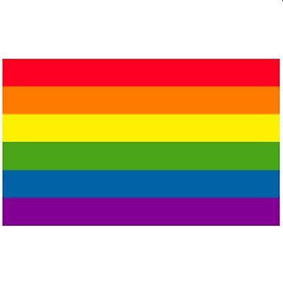 Gay Pride Wholesale Gay Pride Flag Wholesale Lot of 50 Flags