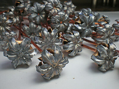 10 Expanded Bullet Flowers With Copper Stems