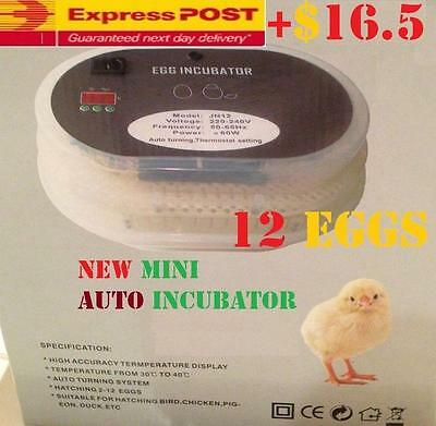 Mini 12 Eggs ACCURACY Digital Automatic Incubator Poultry Turner 25 Quail Kit