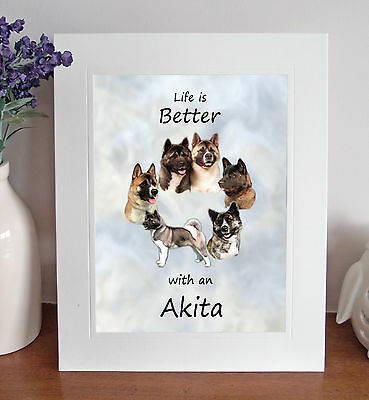 "Akita 'Life is Better' 10""x8"" Mounted Picture Print Dog Pet Lovely Fun Gift Idea"