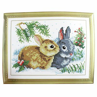 Rabbit Grass Pattern Stamped Cross Stitch Counted Kit for Lady Woman  BF