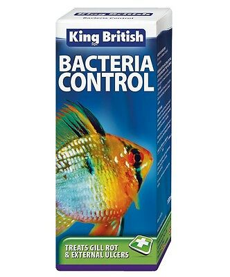 King British Bacteria Control Fish Tank Aquarium Treatment 100ml