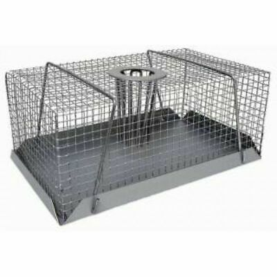 Multi catch Rat trap Large x 2 -  Buy from the importer - Pestrol Australia