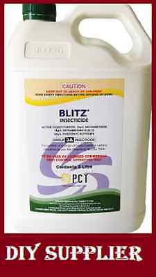 BLITZ INSECTICIDE 5L - cockroaches, fleas, spiders, silverfish, flies & more