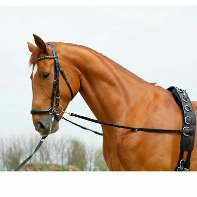 Busse Elasticated Leather Side-Reins FAST & FREE POST