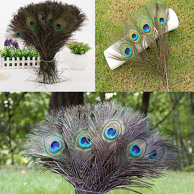 Natural Peacock Tail Feathers Wedding Festival Party Home DIY Decor Supplies