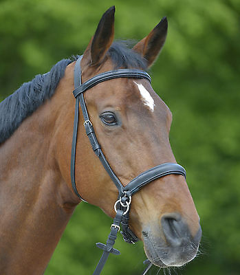 Waldhausen Star Bitless Padded Leather Bridle With Reins - Sidepull