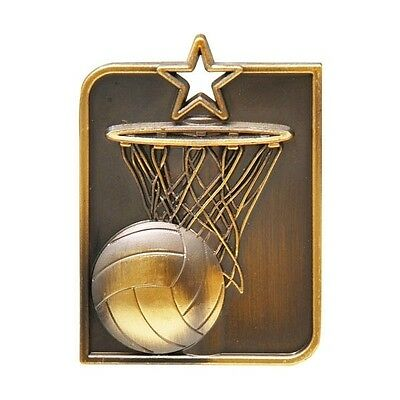 Netball Antique Gold Rectangle Medal with Ribbon, Engraved FREE