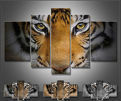 oil painting modern abstract wall decor art canvas tiger 3 color (no frame)