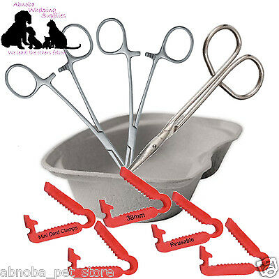 Puppy Dog Kitten Whelping Kit - Mini Reusable Cord Clamps Forceps Scissors Dish