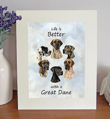 """Great Dane 'Life is Better' 10"""" x 8"""" Mounted Picture Print Image Lovely Gift"""