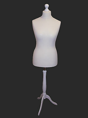 Female Tailors Mannequin Display Dummy  Bust White For Dressmakers All Sizes