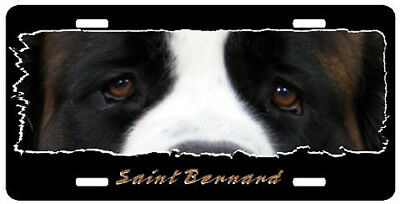 Saint Bernard   The Eyes Have It   License Plate