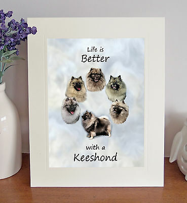 Keeshond 8 x 10 Free Standing LIFE IS BETTER Picture 10x8 Dog Print Gift