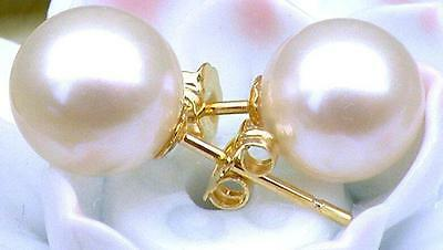 Perfect 10-11 Mm Aaa+++ White Akoya Pearls Earring 14Kt Gold