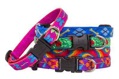 Small Dog Collars by Lupine - 18 Cool Designs and Guaranteed Even if Chewed!