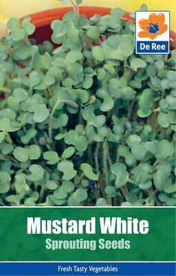 De Ree Mustard White Sprouting Seeds - Vegetable Seeds Pack of 350