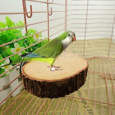 Pet Parrot Raw Wood Platform Stand Rack Toy Hamster Branch Perches for Bird Cage