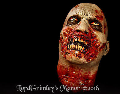 NEW 2016 Decapitated Zombie Head Latex Halloween Prop Horror Severed Decoration
