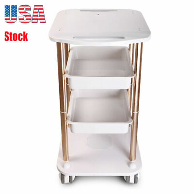 Salon Hairdresser Beauty Spa Coloring Hair Trolley Rolling Storage Cart ABS UK