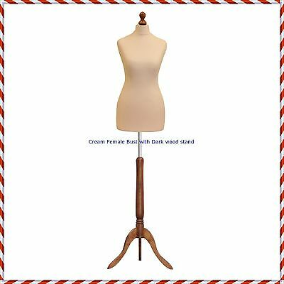 Female Size 12/14  Tailors Bust Mannequin Cream Dummy  Fashion  Retail Display