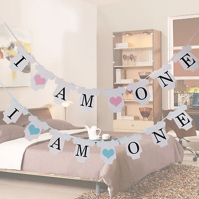 1st I AM ONE Baby Boy's Birthday Party Banner Bunting Hanging Garland Decoration