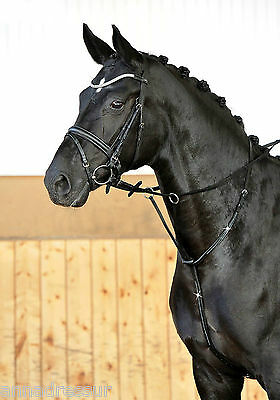 Busse Crystal Running Martingale with Rhinestone Crystals to Neck & Chest Strap