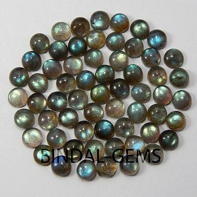 25 Pcs Natural African Labradorite 3X3 Mm Round Shape Loose Gemstone Cabochon