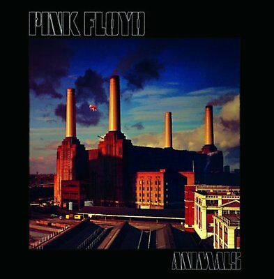 Pink Floyd Animals Greeting Birthday Card Any Occasion Album Cover Official